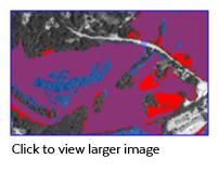 C-CAP vs MassDEP Wetlands
