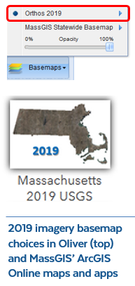 Color Ortho Imagery (2019) ArcGIS Online basemap choice